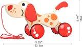 Hape Walk-a-long Puppy