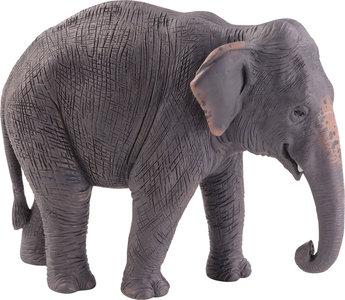 Animal Planet Aziatische olifant