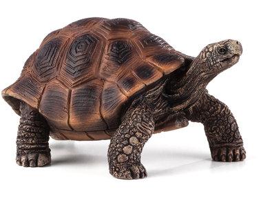 Animal Planet Giant Tortoise